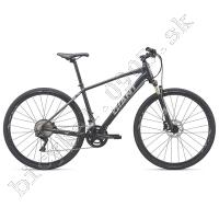 Bicykel Giant Roam 0 Disc čierna 2019 /Vel:L